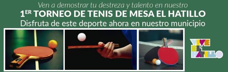 Tennis Mesa