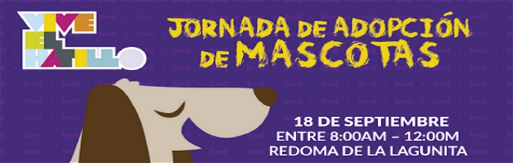 mascotas banner